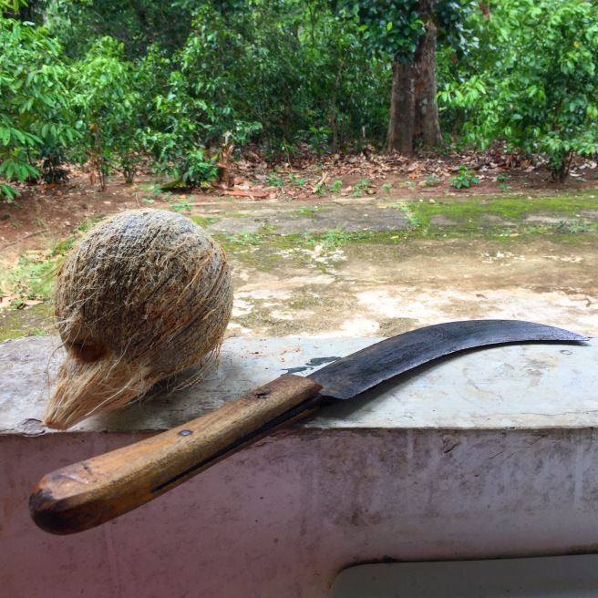 coconut_sambol_2.JPG