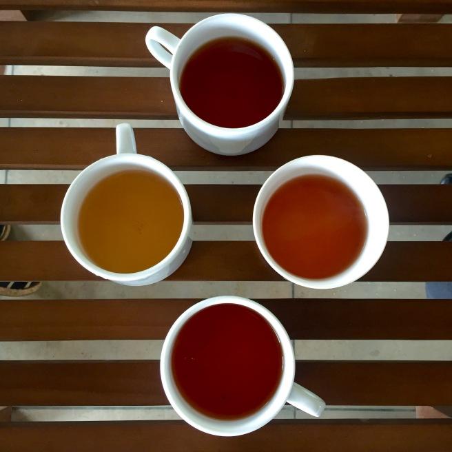 glenloch_tea_tasting