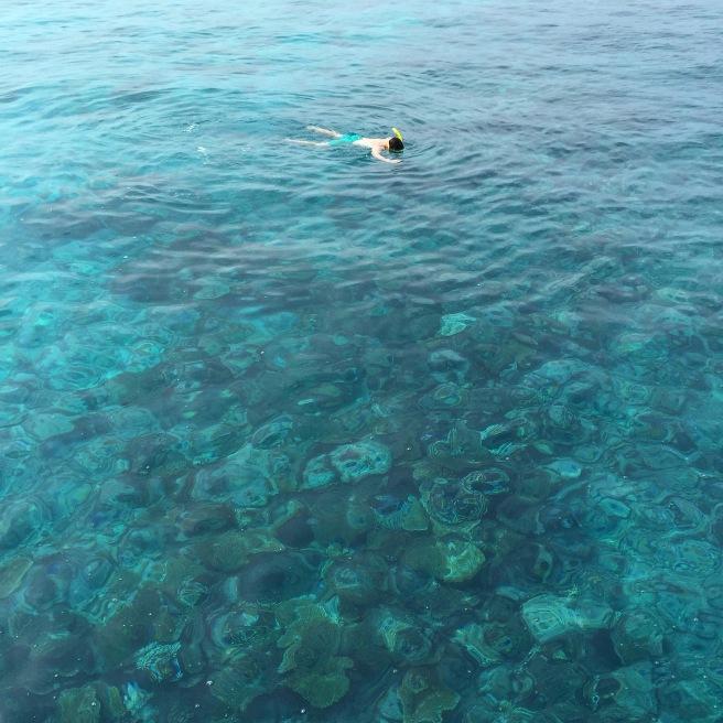 maldives_snorkelling