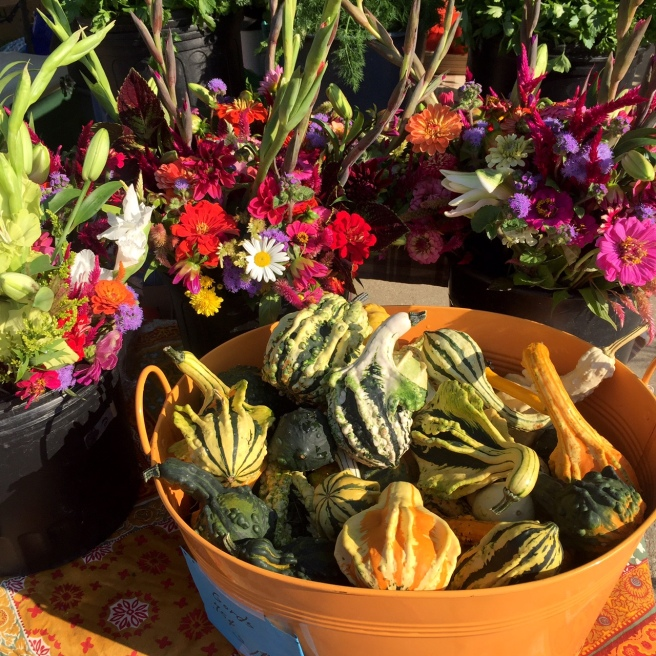 dupont_circle_farmers_market_gourds
