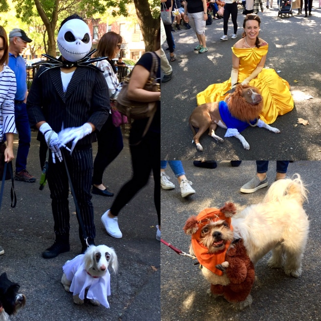 NYC_halloween_doggy_parade_1